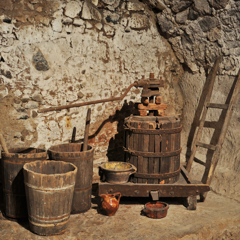 the wine press and the tubs of the basement