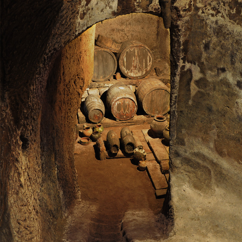 the Mediaeval wine cellar