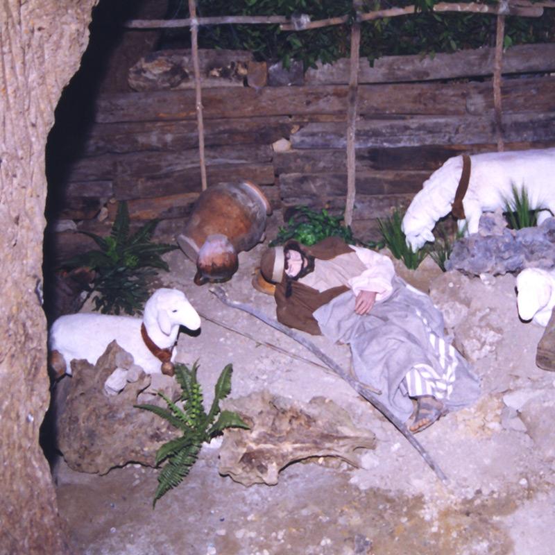 pastore dormiente